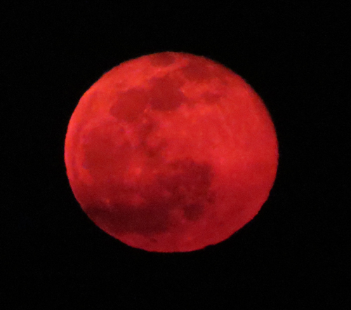 Red Moon of Didier (5)